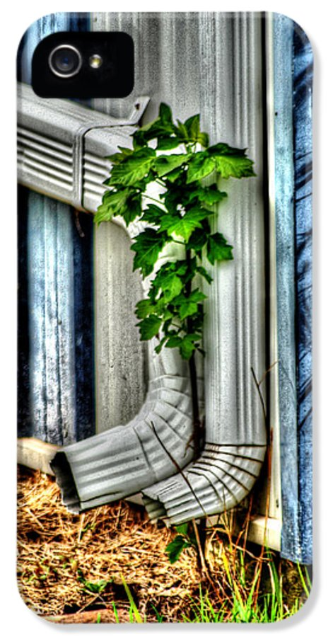 Garden IPhone 5 / 5s Case featuring the photograph Downspout by Doc Braham