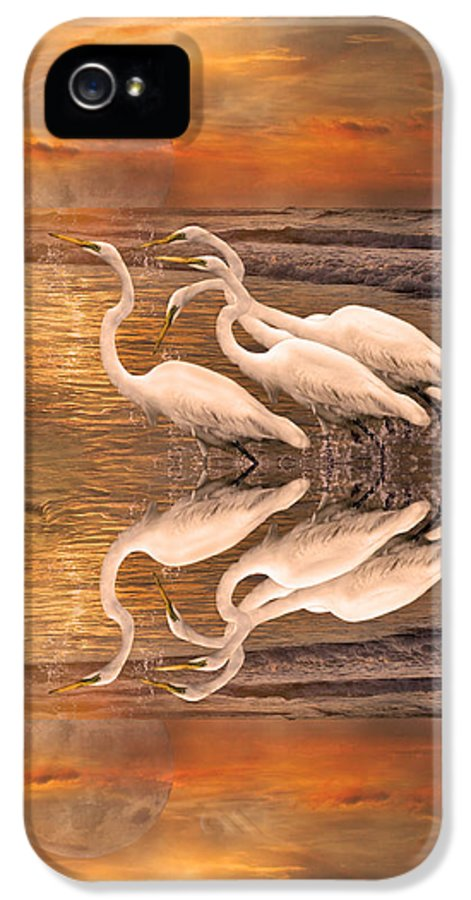 White IPhone 5 Case featuring the digital art Dreaming Of Egrets By The Sea Reflection by Betsy Knapp