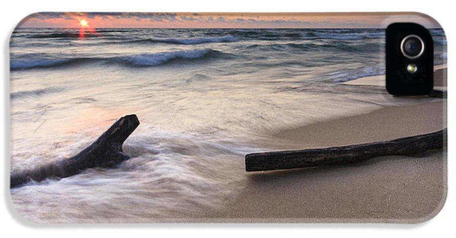 3scape Photos IPhone 5 Case featuring the photograph Driftwood On The Beach by Adam Romanowicz