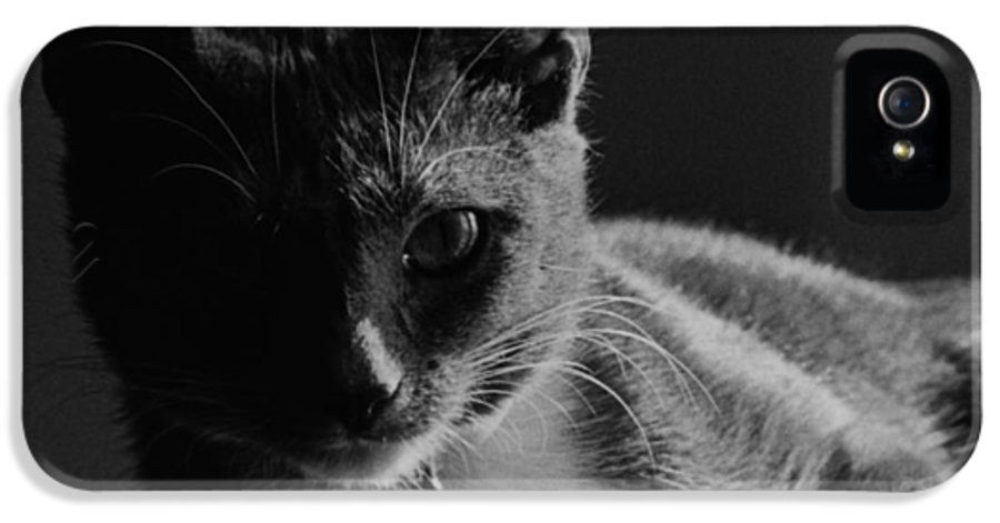 Duchess IPhone 5 Case featuring the photograph Duchess by George Cartledge