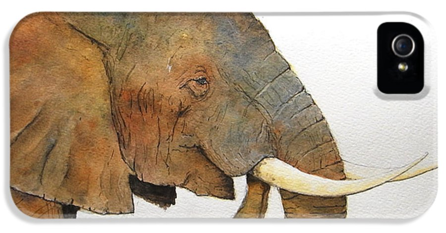 Elephant IPhone 5 Case featuring the painting Elephant Head Study by Juan Bosco