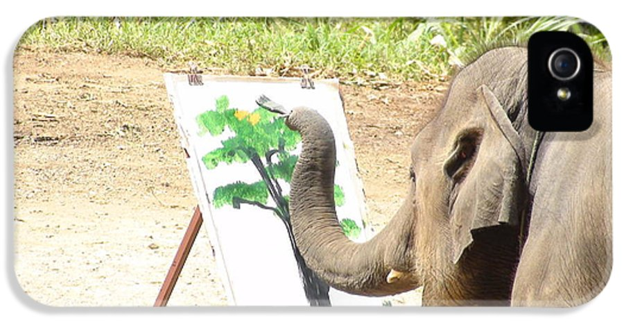 Asian Elephant IPhone 5 Case featuring the photograph Elephant Charlie Paints The Tree Of Life by Colin Smeaton