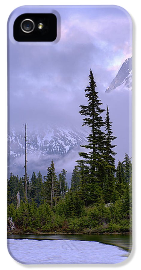 Nature IPhone 5 / 5s Case featuring the photograph Enduring Winter by Chad Dutson