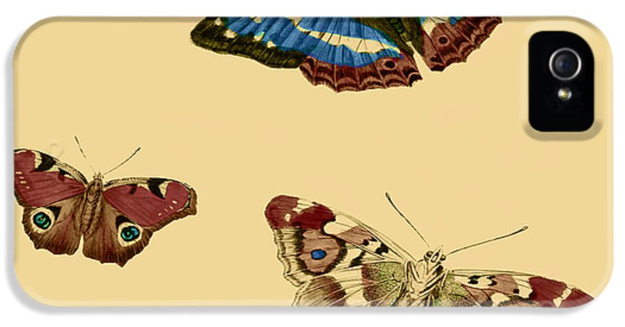 Butterflies IPhone 5 Case featuring the painting English Butterflies by Philip Ralley