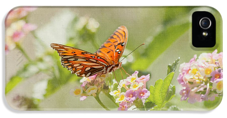 Butterfly IPhone 5 Case featuring the photograph Enjoy The Little Things by Kim Hojnacki