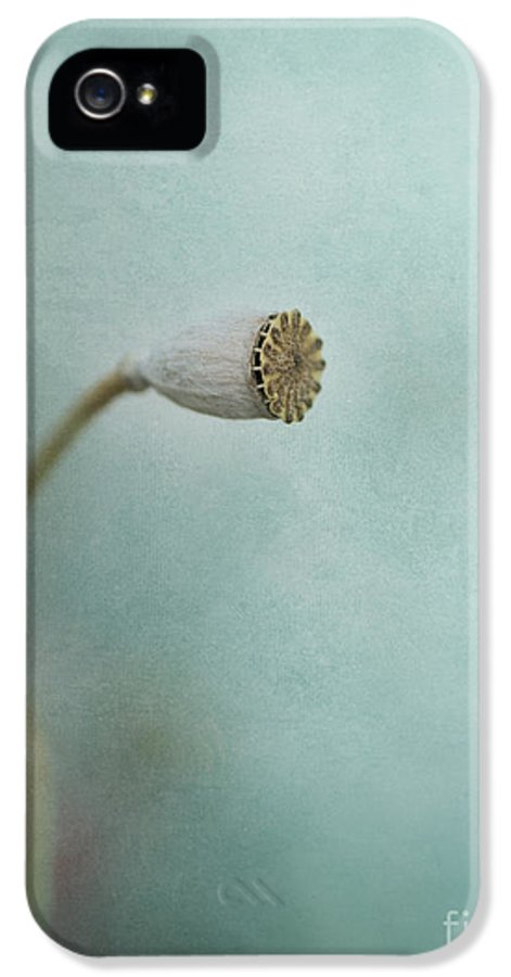 Pod IPhone 5 Case featuring the photograph faded summer I by Priska Wettstein