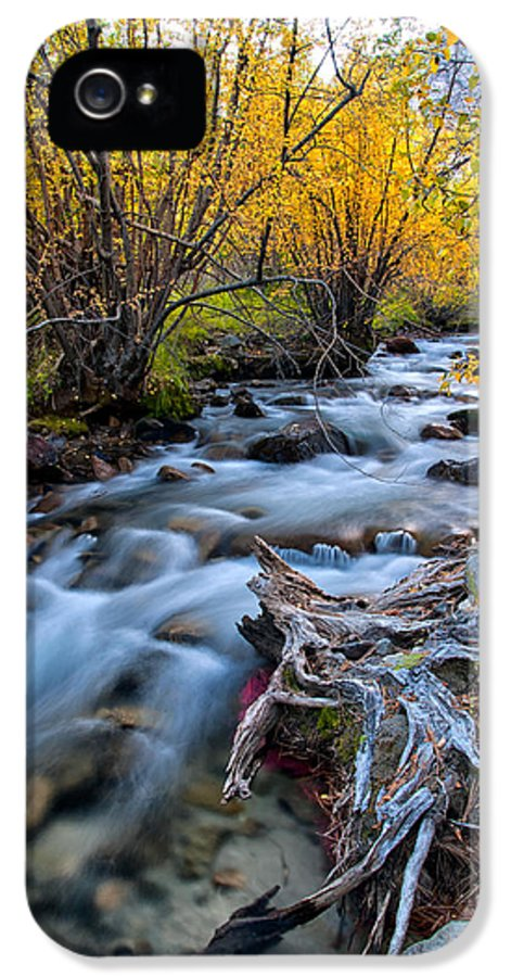 River IPhone 5 Case featuring the photograph Fall At Big Pine Creek by Cat Connor