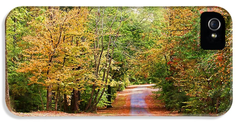 America IPhone 5 Case featuring the photograph Fall Pathway by Judy Vincent