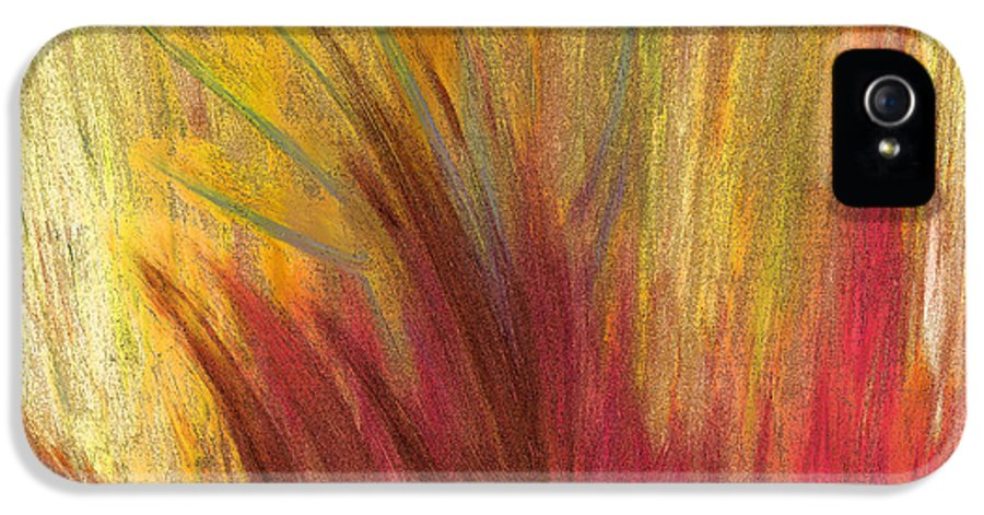First Star Art IPhone 5 / 5s Case featuring the painting Fall Prairie Grass By Jrr by First Star Art