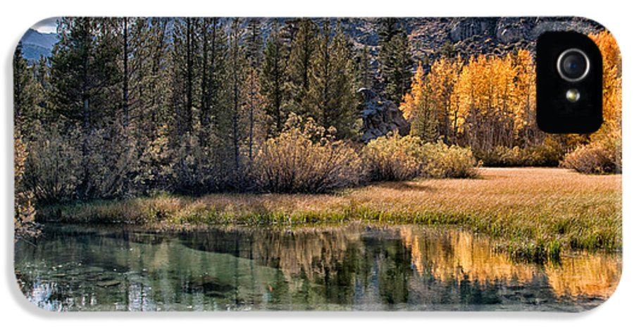 River Creek Water Reflection Fall Orange Yellow Scenic Landscape Nature Eastern Sierra Sierra Nevada California Sky Clouds Mountains IPhone 5 Case featuring the photograph Fall Reflections by Cat Connor