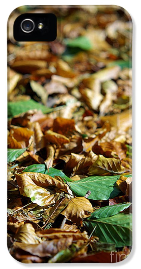 Aged IPhone 5 Case featuring the photograph Fallen Leaves by Carlos Caetano