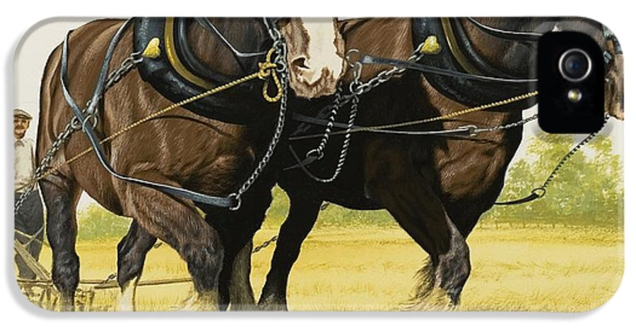 Horse IPhone 5 Case featuring the painting Farm Horses by David Nockels