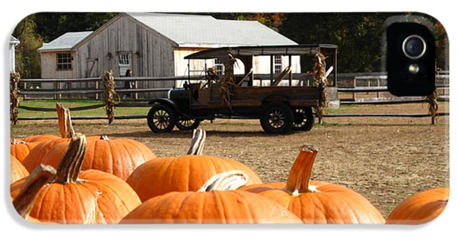 Pumpkin IPhone 5 Case featuring the photograph Farm Stand Pumpkins by Barbara McDevitt
