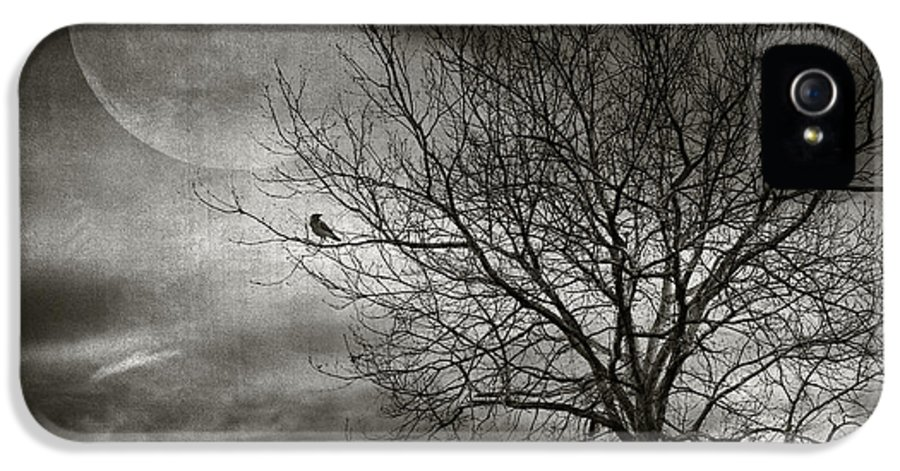 Tree IPhone 5 Case featuring the photograph February Tree by Taylan Apukovska