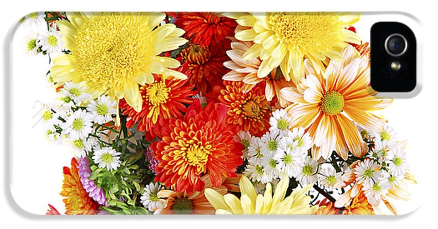 Flower IPhone 5 Case featuring the photograph Flower Bouquet by Elena Elisseeva