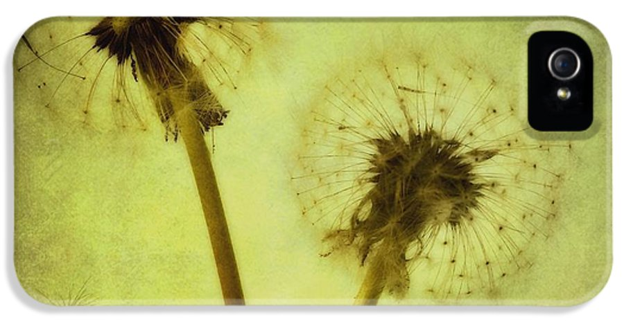 Dandelion IPhone 5 Case featuring the photograph Fly Away by Priska Wettstein