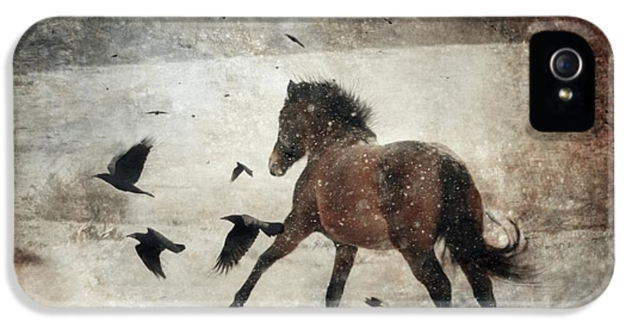 Horse IPhone 5 Case featuring the photograph Flying With The Crows by Dorota Kudyba