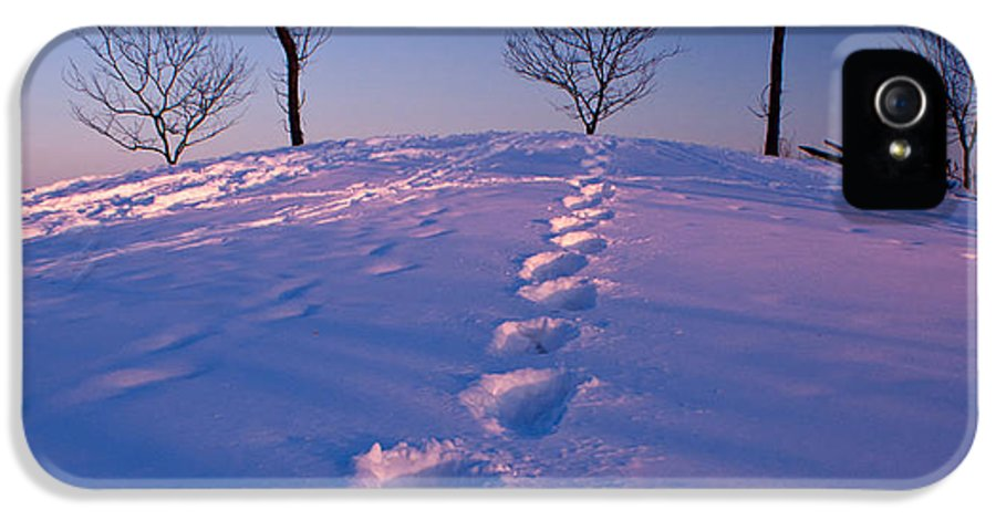 Snow IPhone 5 Case featuring the photograph Footsteps by Cale Best