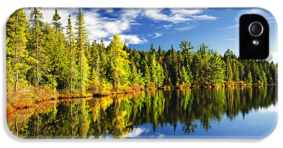 Lake IPhone 5 Case featuring the photograph Forest Reflecting In Lake by Elena Elisseeva
