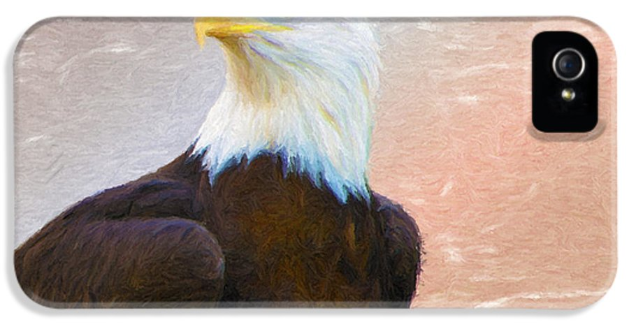 4th IPhone 5 Case featuring the painting Freedom Flyer by Jeff Kolker