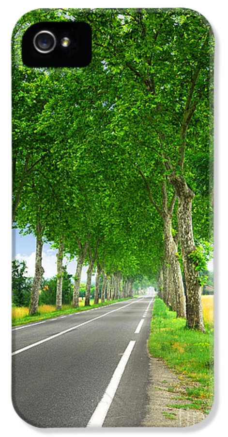 Road IPhone 5 Case featuring the photograph French Country Road by Elena Elisseeva