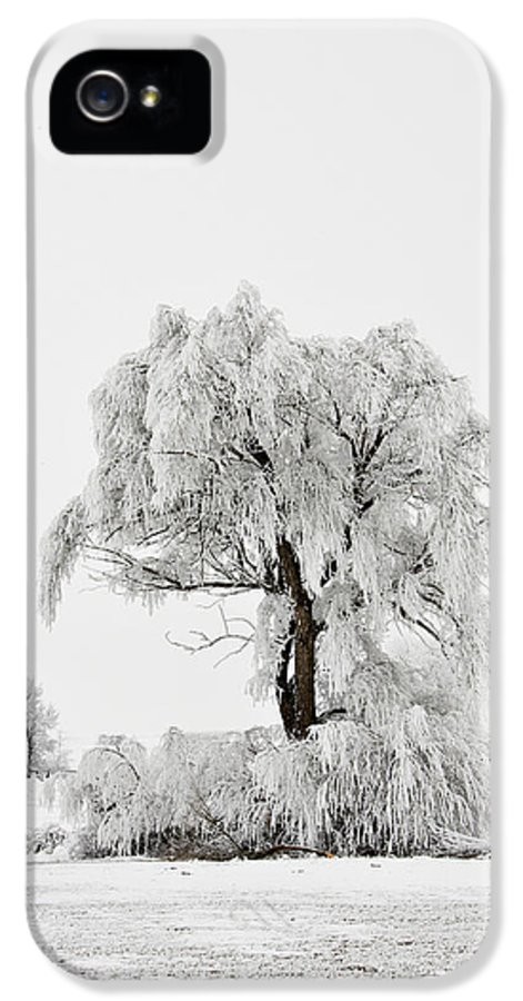 Hoar IPhone 5 Case featuring the photograph Frosted by Mary Jo Allen