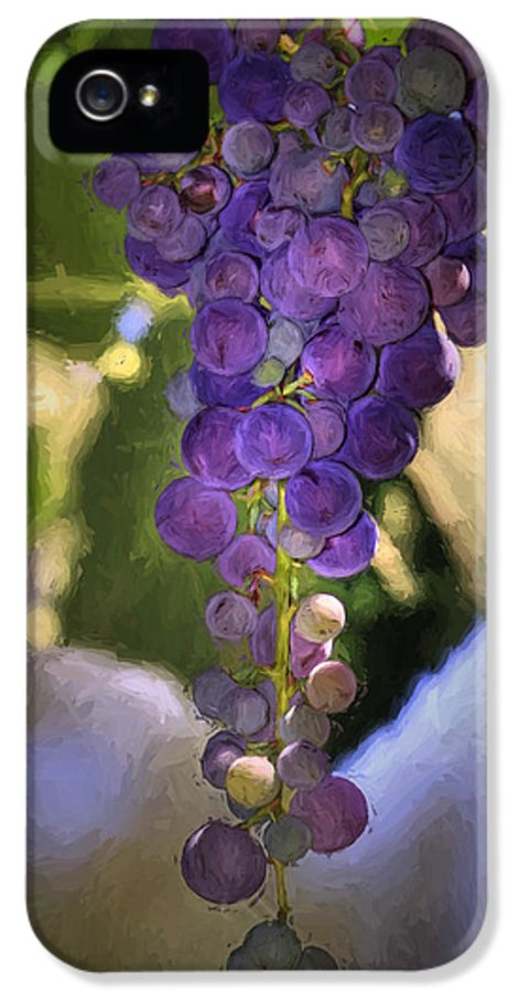 Grape IPhone 5 Case featuring the photograph Fruit Of The Vine by Donna Kennedy