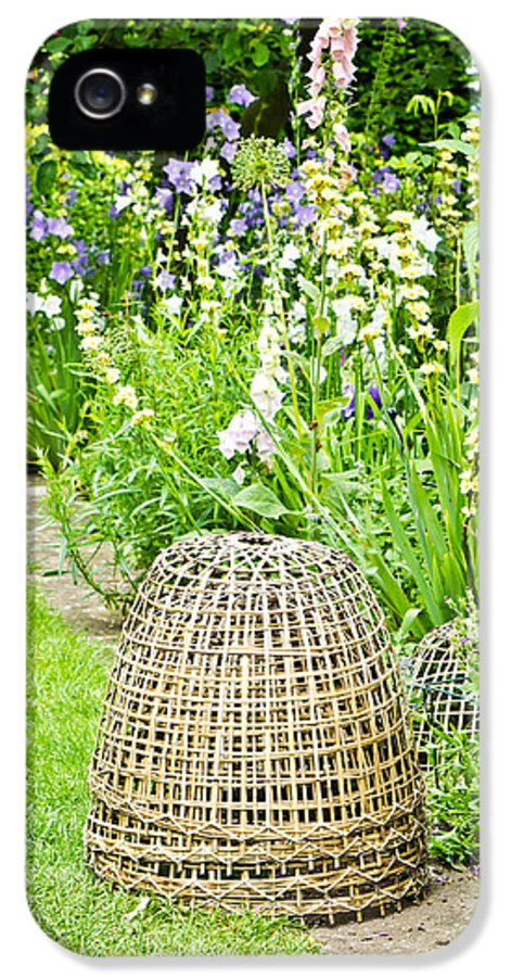 Basket IPhone 5 Case featuring the photograph Garden Decoration by Tom Gowanlock