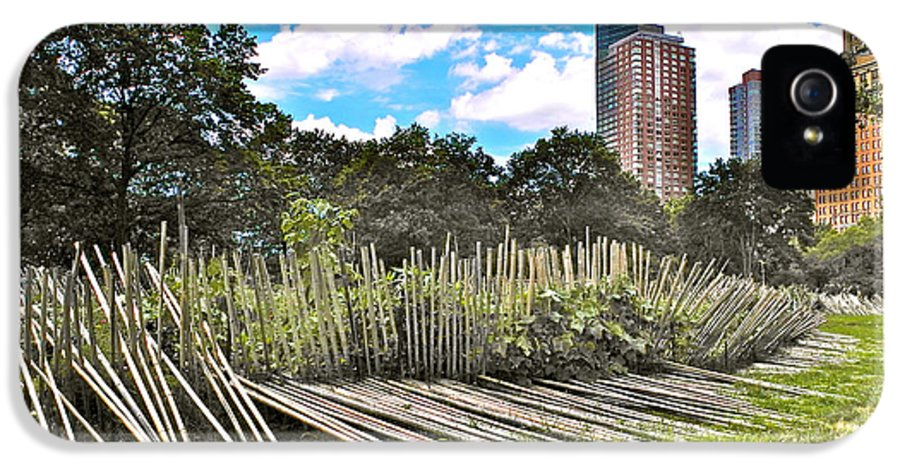 Garden With Bamboo Garden Fence In Battery Park In New York City Ny IPhone 5 Case featuring the photograph Garden With Bamboo Garden Fence In Battery Park In New York City-ny by Ruth Hager