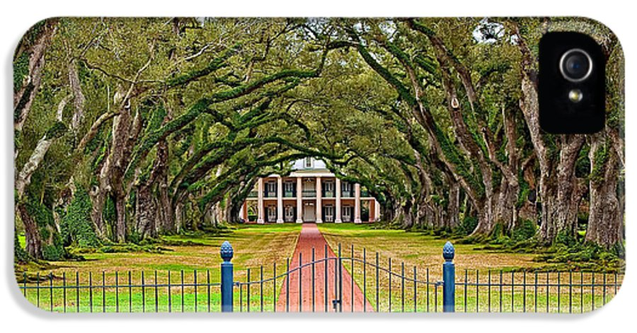 Oak Alley Plantation IPhone 5 Case featuring the photograph Gateway To The Old South by Steve Harrington
