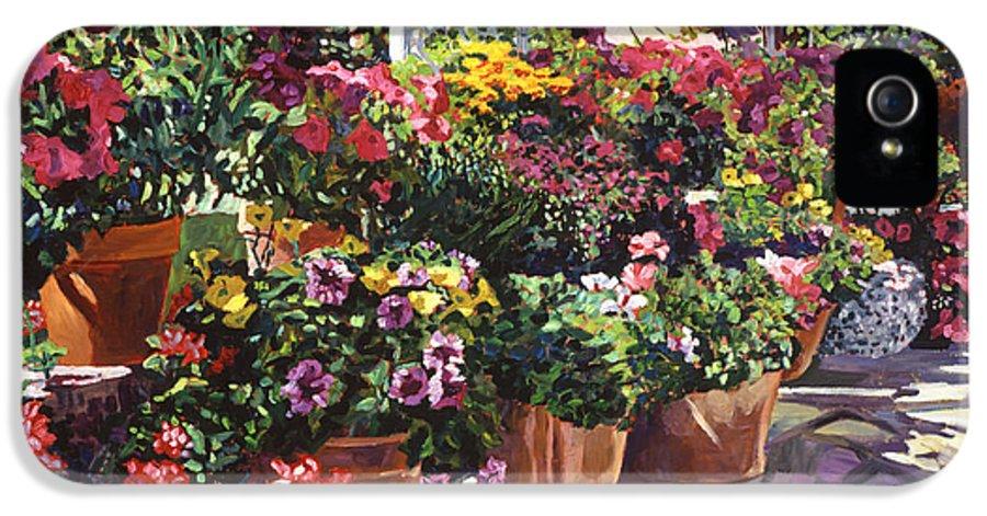 Garden IPhone 5 Case featuring the painting Gazebo Garden by David Lloyd Glover