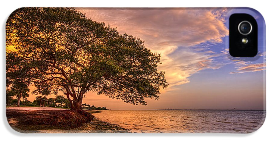 Picnic Island Park IPhone 5 Case featuring the photograph Gentle Whisper by Marvin Spates