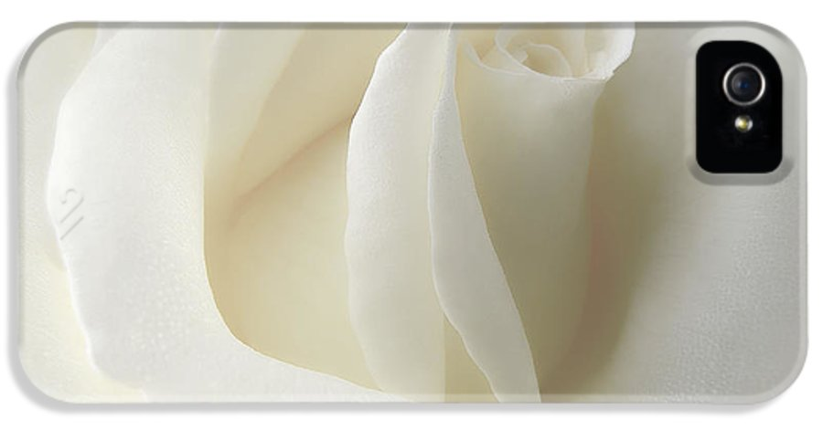 Rose IPhone 5 Case featuring the photograph Gentle White Rose Flower by Jennie Marie Schell