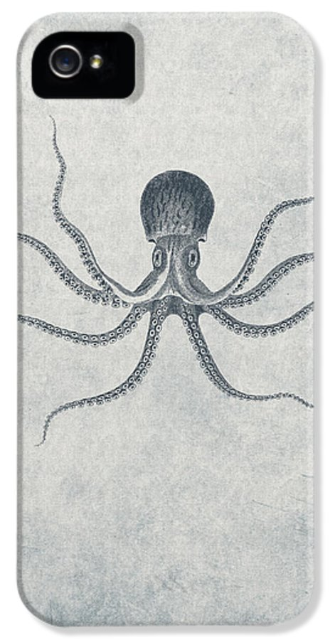 Giant Squid IPhone 5 Case featuring the drawing Giant Squid - Nautical Design by World Art Prints And Designs