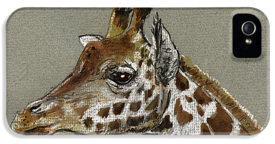 Drawing IPhone 5 Case featuring the painting Giraffe Head Study by Juan Bosco
