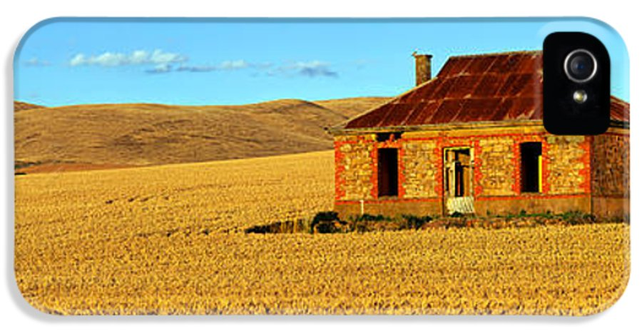 Abandoned Mid North Homestead Ruin Farm House Wheat Field Golden Harvest Nankeen Kestrels Pano Panorama Burra South Australia Australian Landscape  IPhone 5 Case featuring the photograph Golden Harvest by Bill Robinson