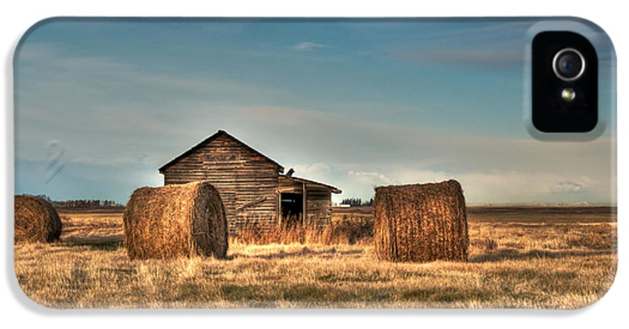Texture IPhone 5 Case featuring the photograph Golden Hay by Lisa Knechtel