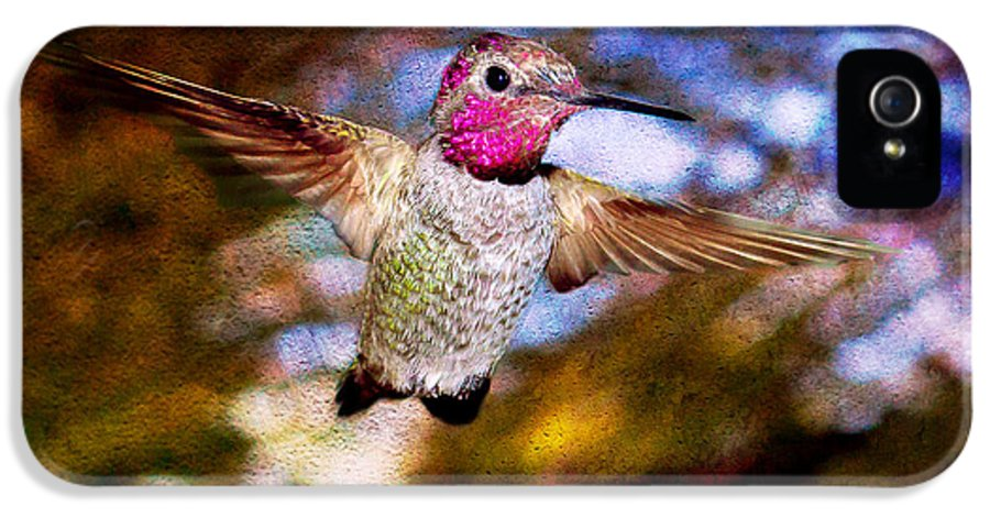 Shaking Ratio IPhone 5 Case featuring the photograph Golden Light Hummingbird Flight by Jeanette Brown