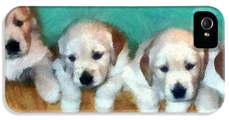 Golden Retriever IPhone 5 Case featuring the photograph Golden Puppies by Michelle Calkins