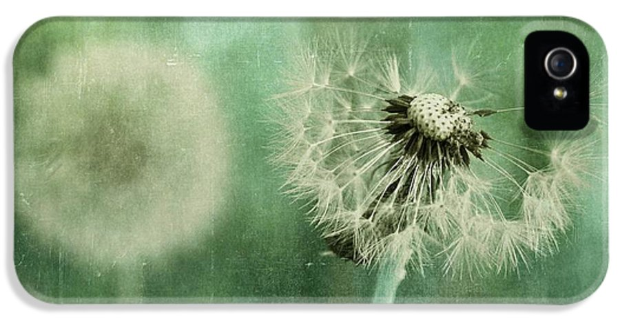 Dandelion IPhone 5 Case featuring the photograph Gone by Priska Wettstein