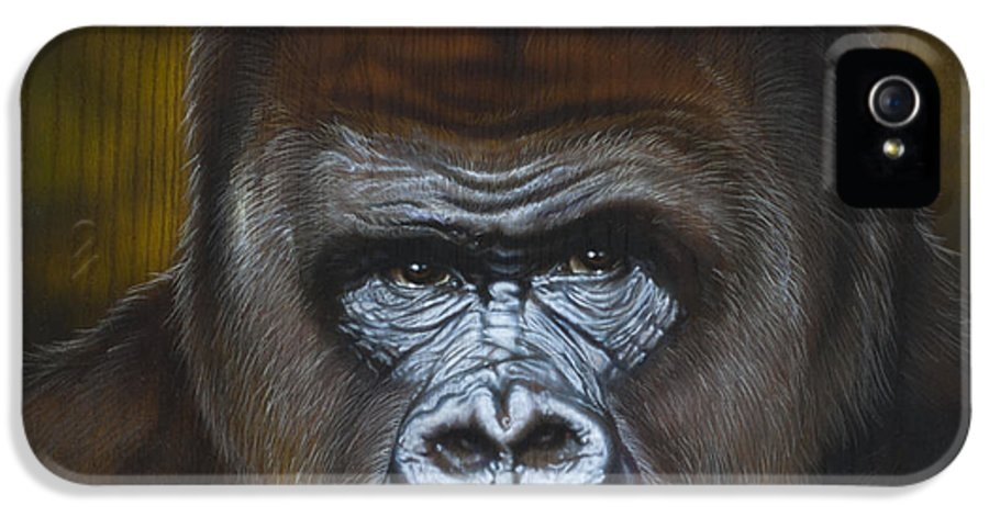 Wildlife IPhone 5 Case featuring the painting Gorilla by Timothy Scoggins