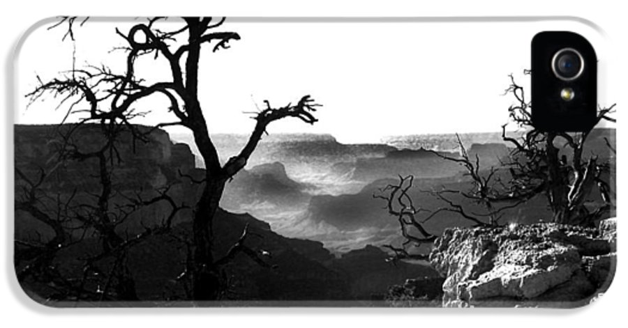 Grand Canyon IPhone 5 Case featuring the photograph Grand Nature by Camille Lopez