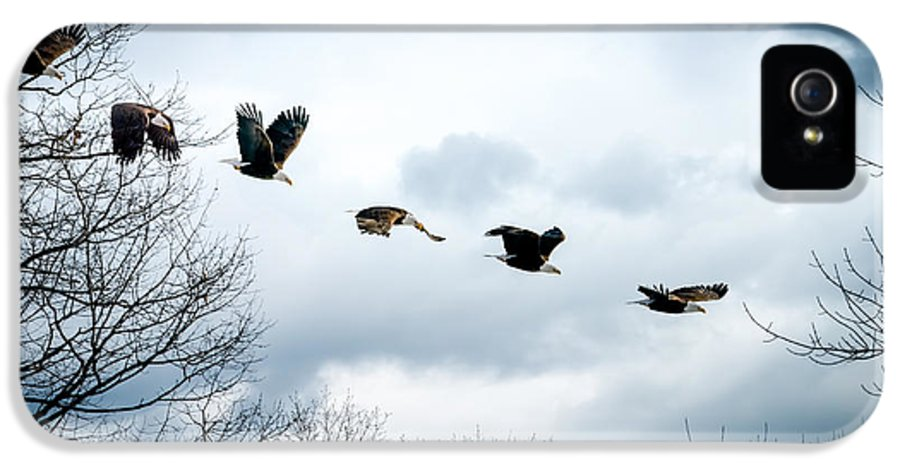 Eagle IPhone 5 Case featuring the photograph Half Second Of Flight by Bob Orsillo