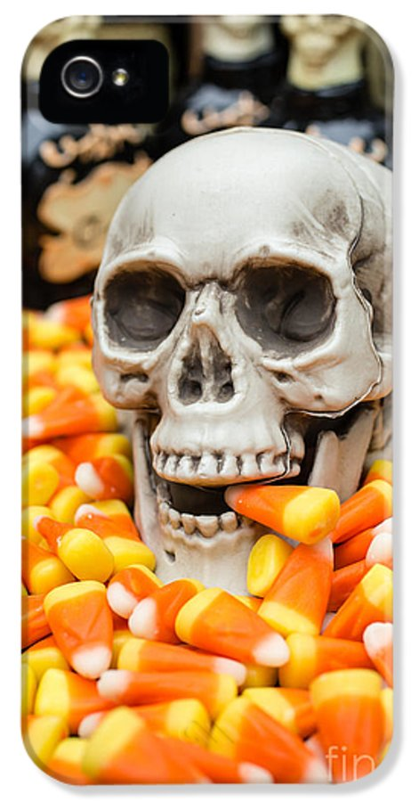 Buffet IPhone 5 Case featuring the photograph Halloween Candy Corn by Edward Fielding