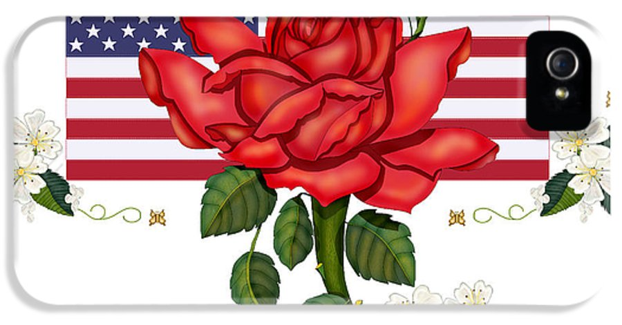 Happy 4th Of July IPhone 5 Case featuring the painting Happy Birthday America by Anne Norskog