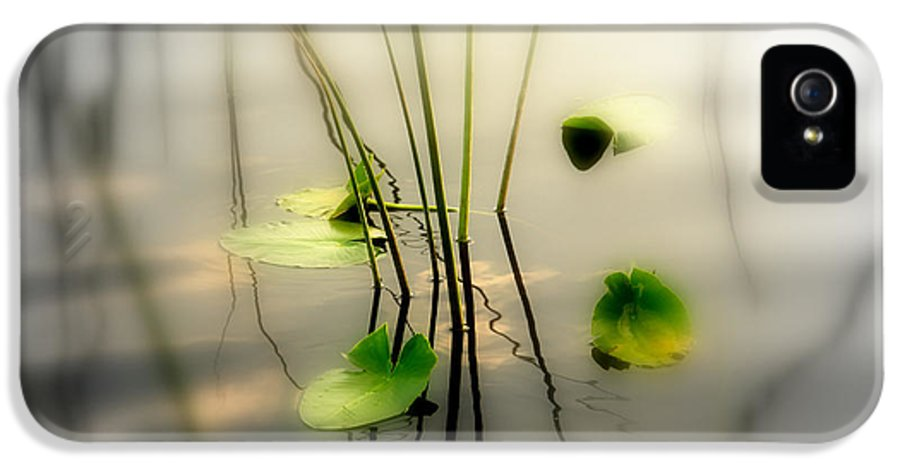 Zen IPhone 5 Case featuring the photograph Harmony Zen Photography II by Susanne Van Hulst