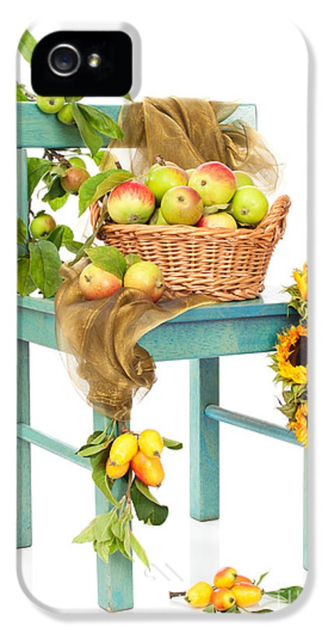 Basket IPhone 5 Case featuring the photograph Harvest Fayre by Amanda Elwell