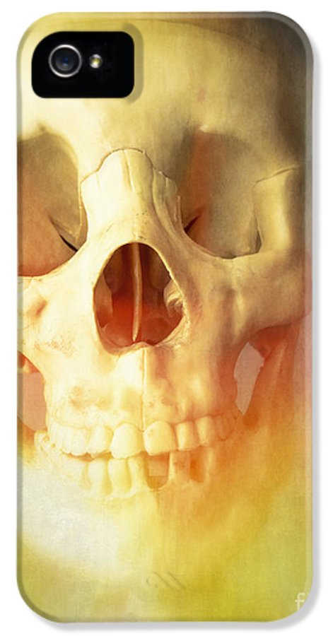 Skeleton Bones Skull Human Halloween Creepy Spooky Dead IPhone 5 Case featuring the photograph Hell Fire by Edward Fielding