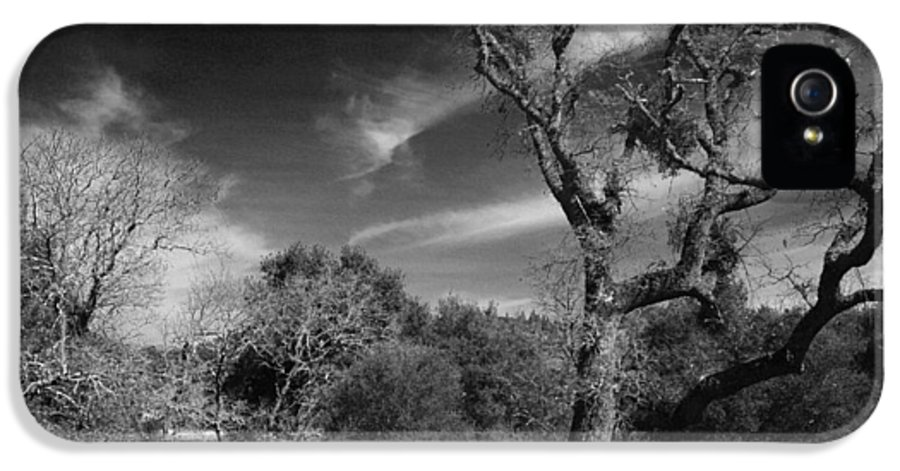 Lafayette Reservoir Recreation Area IPhone 5 Case featuring the photograph Here As I Stand by Laurie Search