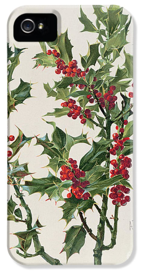 Holly IPhone 5 Case featuring the painting Holly by Alice Bailly